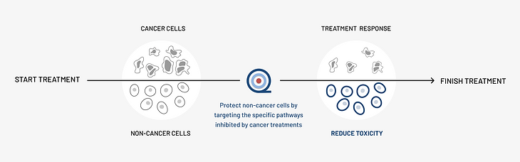 onquality cancer care solution diagram