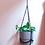 Thumbnail: chain plant hanger + pot set - large