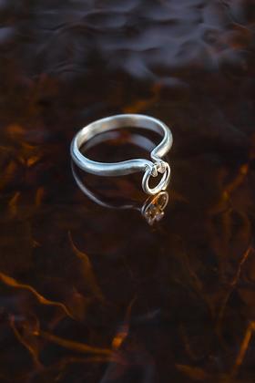 omega ring