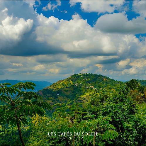 Blue Mountain Jamaïque