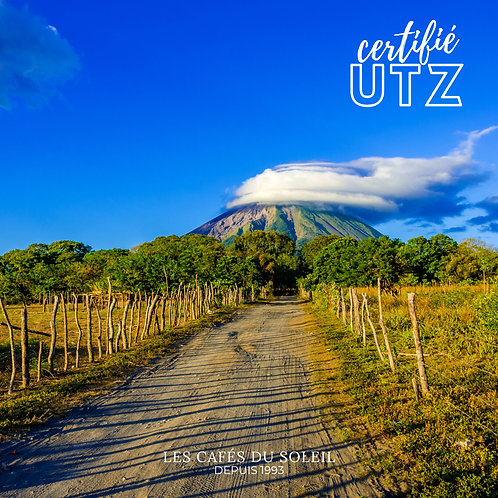 Nicaragua Santa Celia Torréfaction Noire