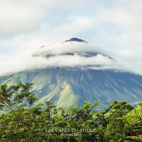 Costa Rica Tarrazu Torréfaction Spécialisée