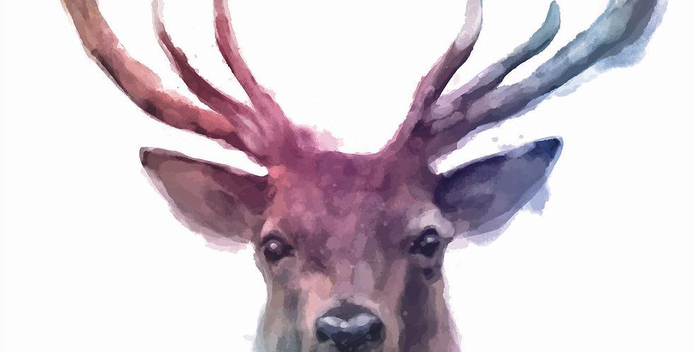'Stag Watercolour'