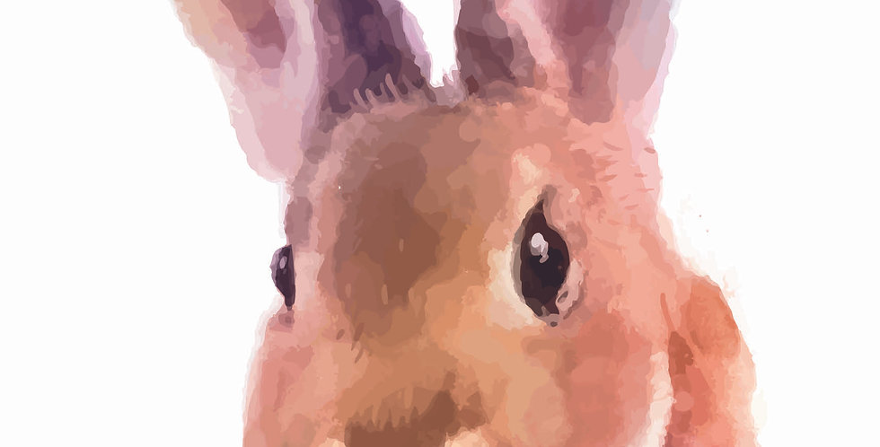 'Rabbit Watercolour'