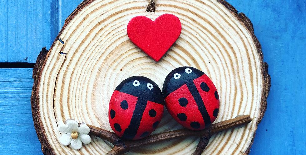 Ladybird Couple