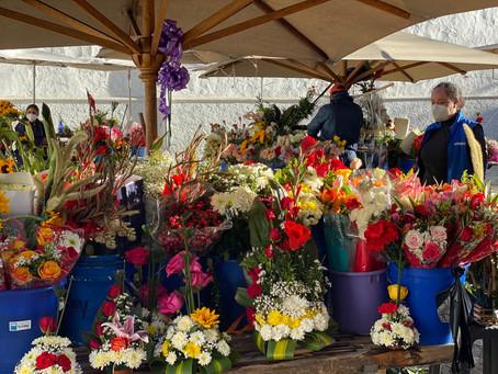 Disfruta de la Plaza de las Flores, un rincón colorido de Cuenca ahora en la ciudad de Quito.