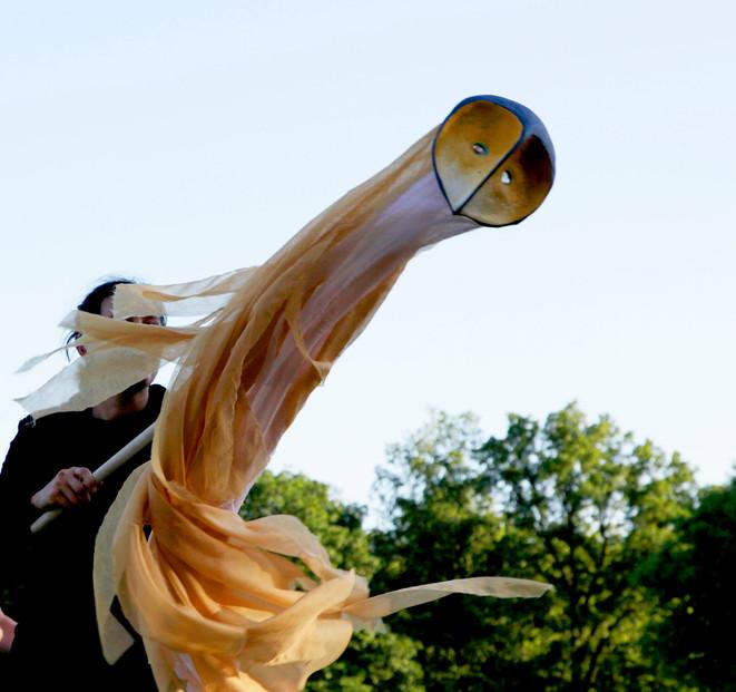 Ariel Flying