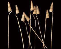 Cane Cone Mini Natural