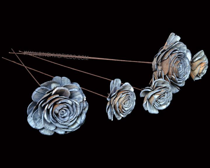 Sola Skin Beauty Rose on WST Blue Grey.j