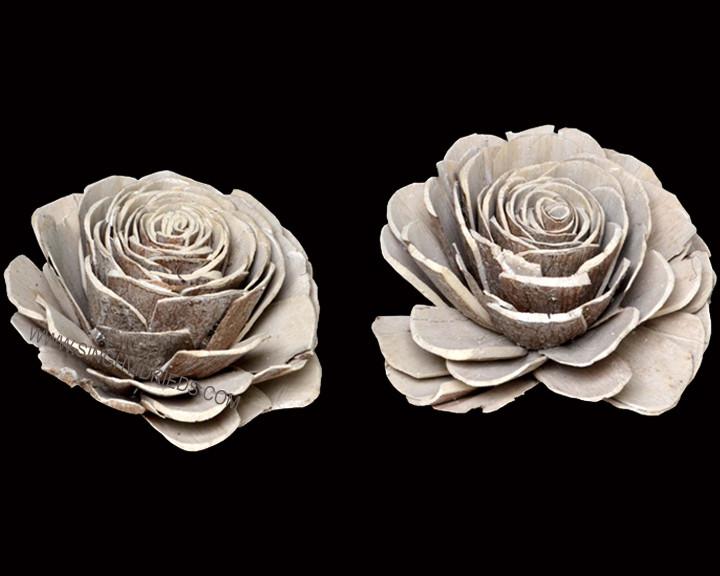 Sola Skin Beauty Rose Antique White