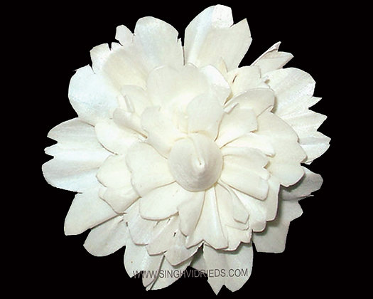 Sola Gadi Flower