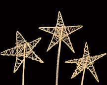 Lata Perforated Star on Stick