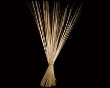 Reed Stem Natural