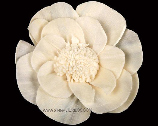 Sola Saf Flower