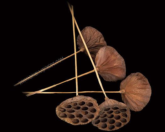Lotus on Bamboo Stem