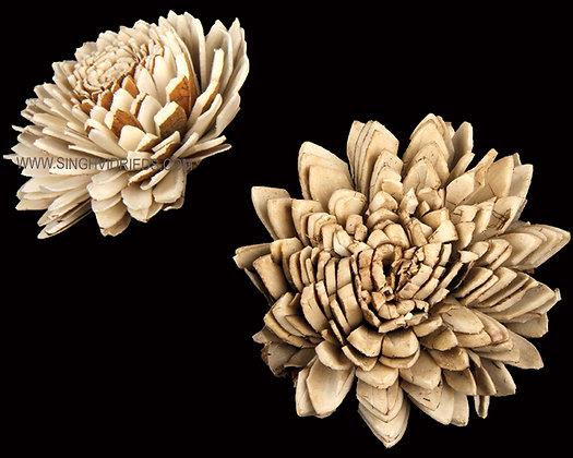 Sola Skin Zinia Flower