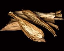Nut Leaf Natural