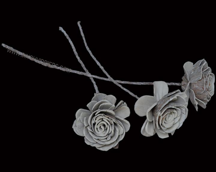 Sola Skin Beauty Rose on TST Antique White