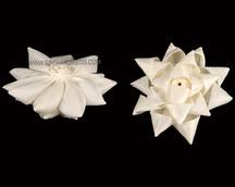 Sola Bow Flower
