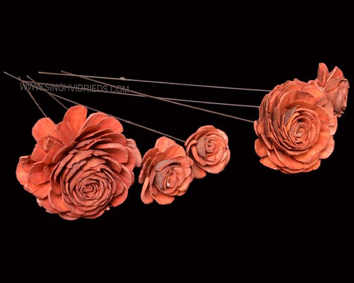 Sola Skin Beauty Rose on WST Orange.jpg