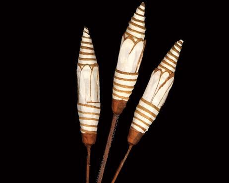 Sola Slice Pine Stick