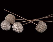 Ata Fruit on Wire Stem