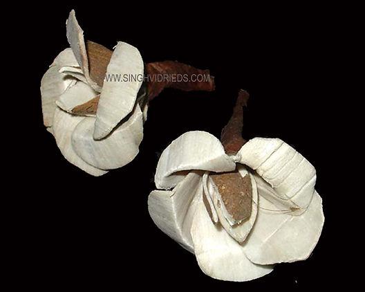 Sola Wood Rose
