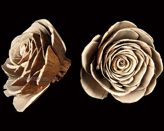 Sola Skin Beauty Rose Flower
