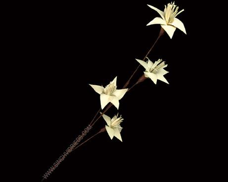 Palm Lily Stick
