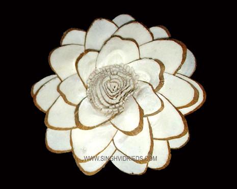 Sola Chip Sun Flower