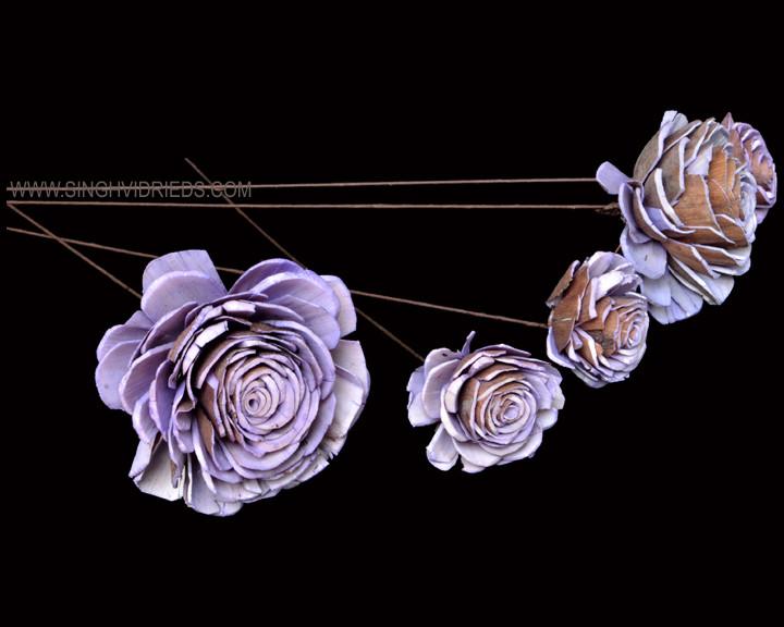 Sola Skin Beauty Rose on WST Lilac.jpg