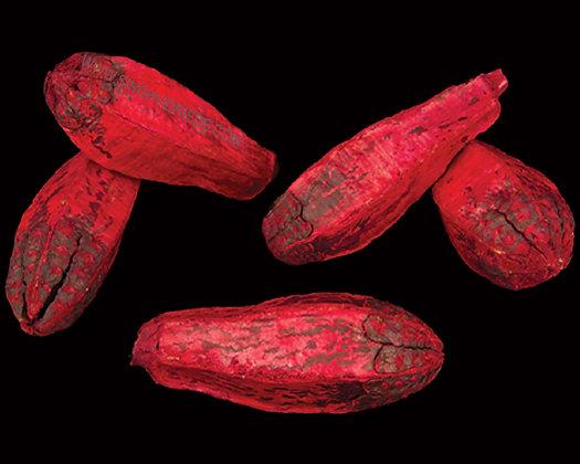 Mehogony Red