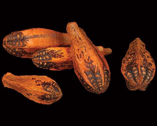 Mehogony Orange