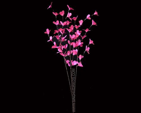 HM. 8STK003 - Pink