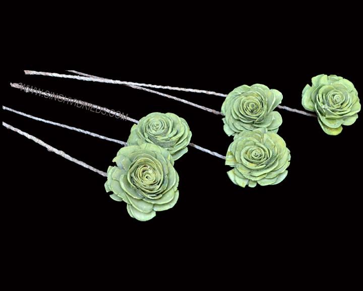 Sola Skin Beauty Rose on TST Antique Two Tone Apple Green