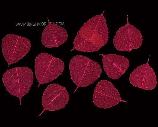 Pipul Leaf Skeleton Dark Pink