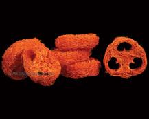 Luffa Slice Orange