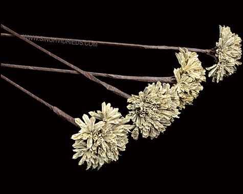 Mustard Bunch Flower Stick Natural