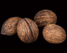Mintolla Ball Natural