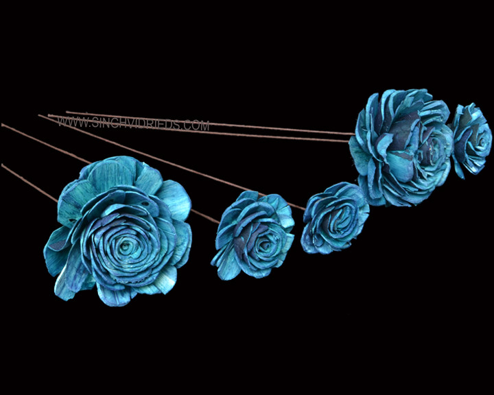 Sola Skin Beauty Rose on WST Turquois.jp