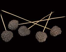 Ata Fruit on Bamboo Stem