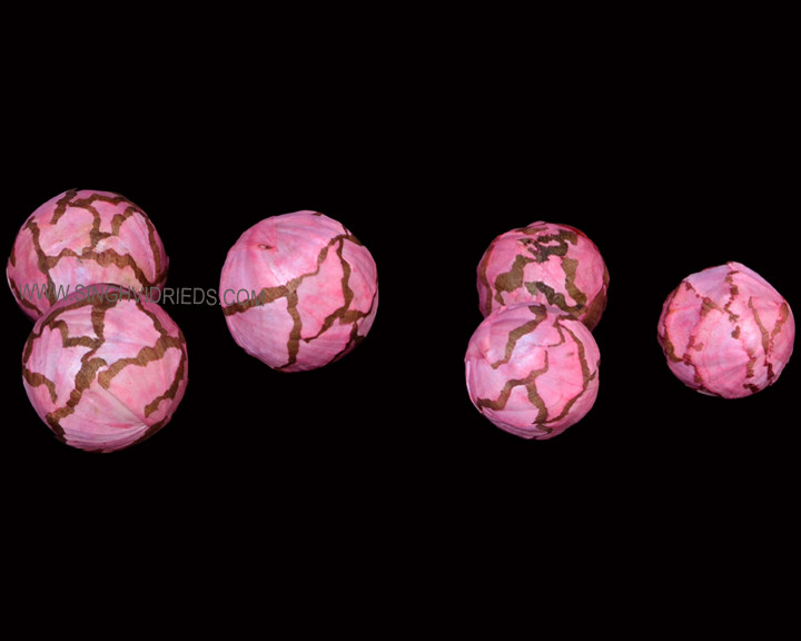 Sola Cabbage Ball RS Baby Pink.jpg