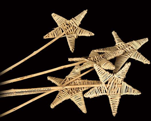 Lata Star Stick