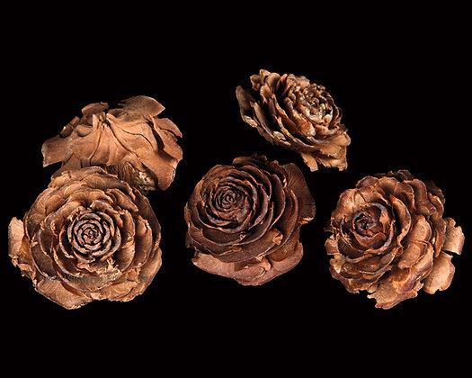 Cedar Rose Natural