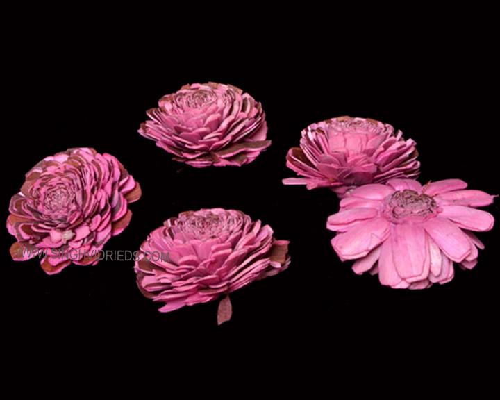 Sola Mix Bela Pink.jpg