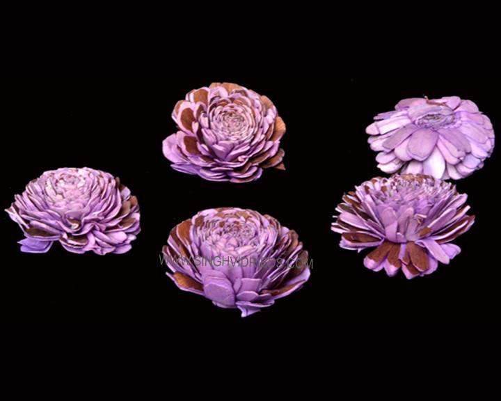 Sola Mix Bela Lilac.jpg