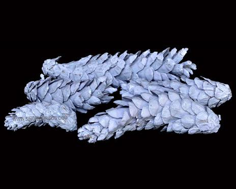 Strobus Enamel White