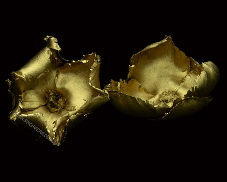 Palm Cap Antique Gold