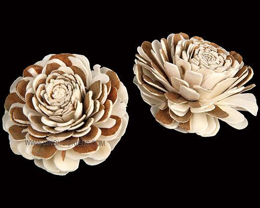 Sola Multi Beli Flower