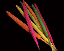Babala Mix Colours